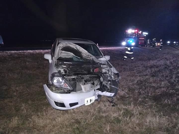 Accidente en la Autovía Ruta 36: vehículo colisiona con un animal vacuno